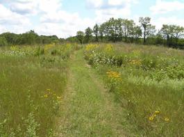 Prairie-Trail